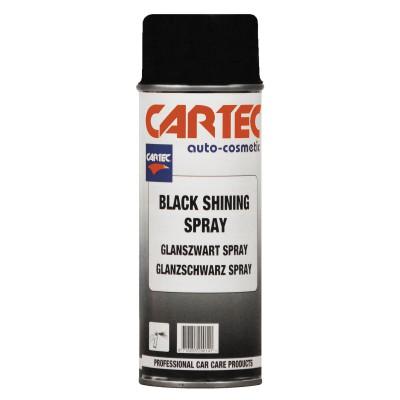 Black Shining Spray